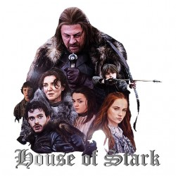 tee shirt game of thrones house of stark  sublimation