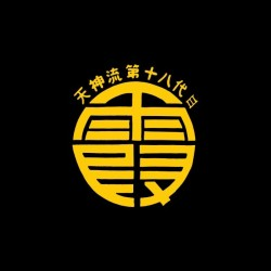Dead or Alive Kasumi symbol black sublimation t-shirt