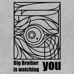 tee Shirt Big Brother gris sublimation