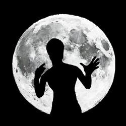 tee shirt bruce lee ombre pleine lune  sublimation