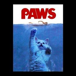tee shirt Paws sublimation