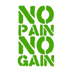 Tee Shirt  No Pain No Gain  sur  sublimation