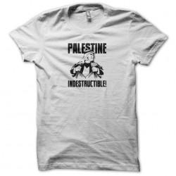 indestructible palestine...