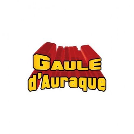 Tee shirt Goldorak parodie Gaule d'Auraque  sublimation