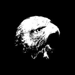 t-shirt hawk black sublimation
