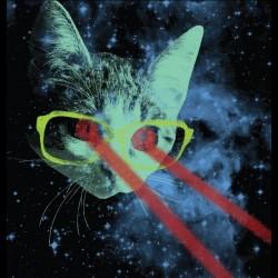 Tee shirt space cats, chats de l'espace Galaxy  sublimation