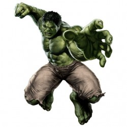 tee shirt The Hulk...