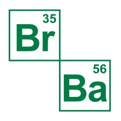 Tee Shirt BrBa green on...