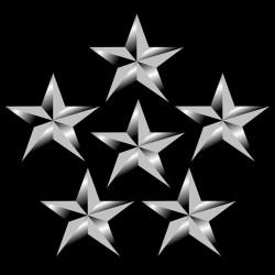 tee shirt US Star Army black sublimation
