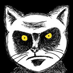 t-shirt angry cat portrait art black sublimation