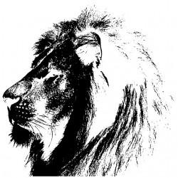sublimation profile white lion t-shirt