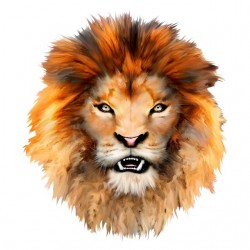 tee shirt lion head white sublimation