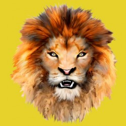 t-shirt of lion yellow sublimation