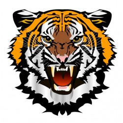 tiger white sublimation...