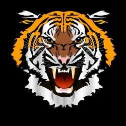 tee shirt tiger black...