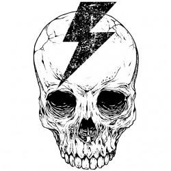 tee shirt thunderbolt skull...