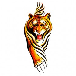 tiger t-shirt in white...
