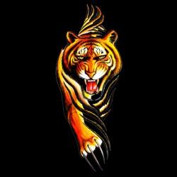 tee shirt tiger en chasse...