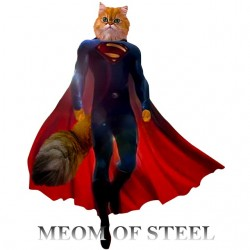 tee shirt Meom of steel...