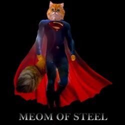 tee shirt Meom of steel black sublimation