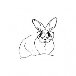 T-shirt rabbit with glasses...