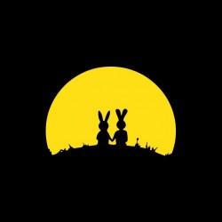 Tee shirt Rabbit sunset...