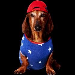 tee shirt swagy dog  sublimation
