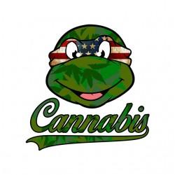 tee shirt turtle ninja weed...