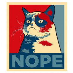 t-shirt grumpy cat nope...