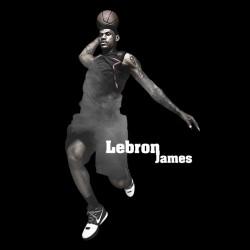 t-shirt lebron james black sublimation