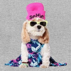 tee shirt dog selfie gris sublimation