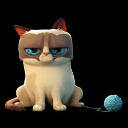 tee shirt Grumpy Cat  sublimation