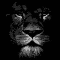 Lion black sublimation t-shirt