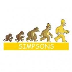 evolution homer simpsons...