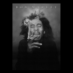 tee shirt bob marley tableau  sublimation