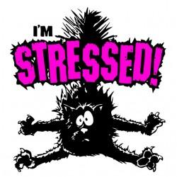 tee shirt du chat stresse...