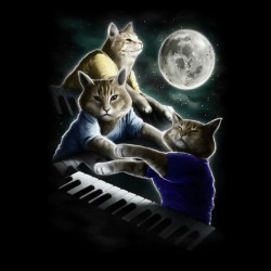 tee shirt the pianists cats black sublimation