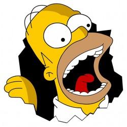 tee shirt Homer Simpson...