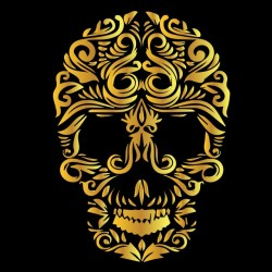 tee shirt ornamental skull...