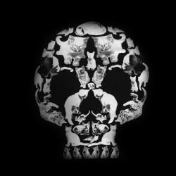 tee shirt skull cat...