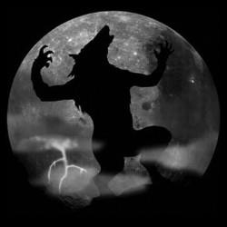 werewolf black sublimation tee