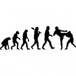 shirt evolution free fight...