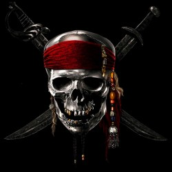 tee shirt pirates of the caribbean  sublimation