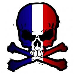 t-shirt skull french flag...