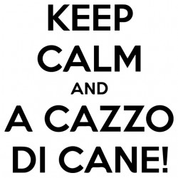 shirt keep calm and a cazzo...