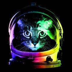 t-shirt astronaut cat black sublimation