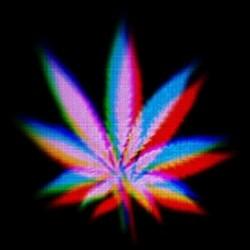 tee shirt marijuana design...