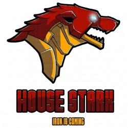 tee shirt house stark iron...