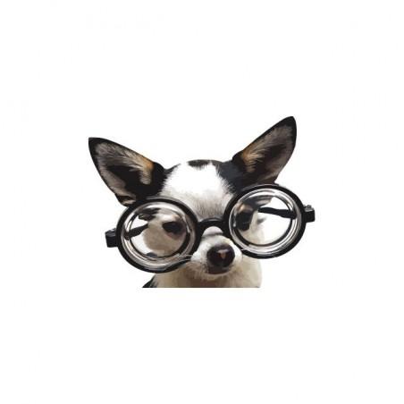 T-shirt dog with glasses white sublimation
