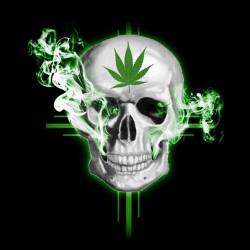 t-shirt marijuana skull...